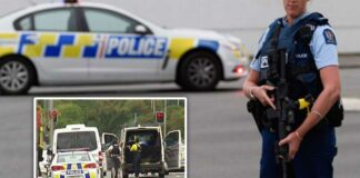 Tiroteo en Nueva Zelanda - cantineoqueteveo news