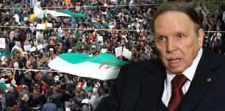 Argelia - Cantineoqueteveo News