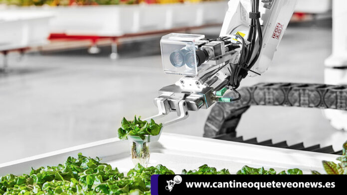 cantineoqueteveo - Primer Robot agricultor