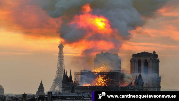 catedral de notre dame-cantineoqueteveonews