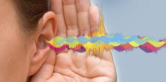 salud y bienestar - ruido - Cantineoqueteveo News
