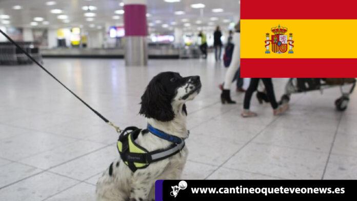 CantineoqueteveoNews - Cuando una familia completa decide emigraren busca de nuevas oportunidades; una de las mayores preocupaciones...