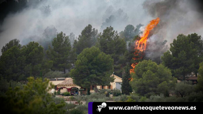 incendio en perellón devasta 200 hectareas