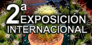Exposición de cactus-madrid-cantineoqueteveonews