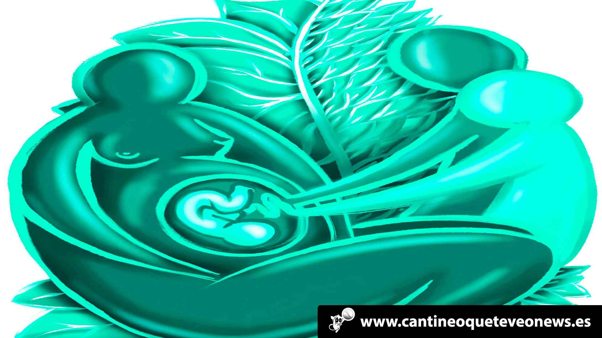 Cantineoqueteveo News - Vientres en Alquiler