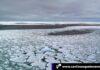 Cantineoqueteveo News - Antártida pierde capas hielo