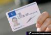 Cantineoqueteveo News - Licencia de conducir en España