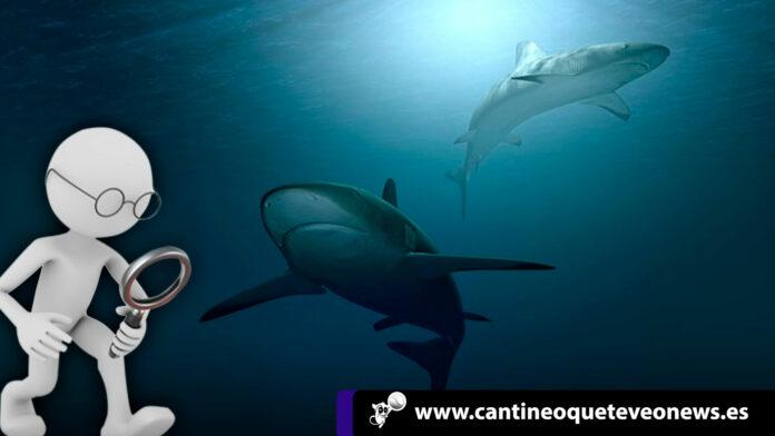 revistas científicas en español depredadoras - Cantineoqueteveonews