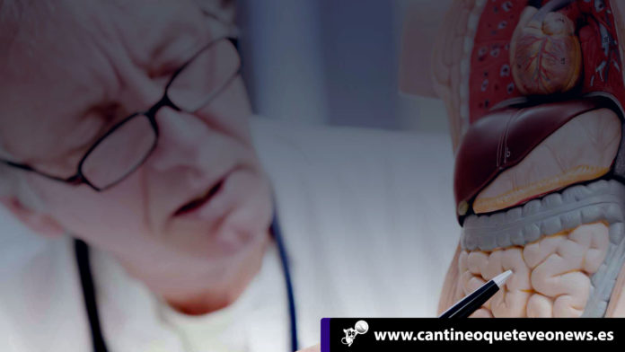 El cáncer - Cantineoqueteveonews