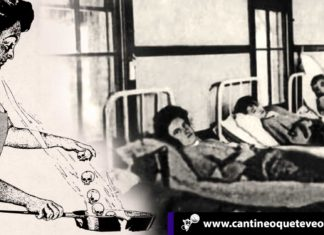 fiebre tifoidea - Cantineoqueteveonews