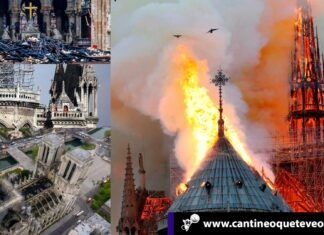 Notre Dame - Cantineoqueteveonews