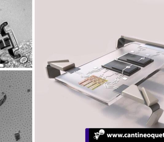 Los microrobots - Cantineoqueteveonews