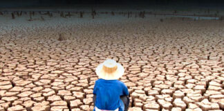 cambio climático - Cantineoqueteveonews