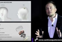 Neuralink - Cantineoqueteveonews