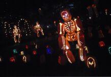Carnaval de Binche - Cantineo que te veo news